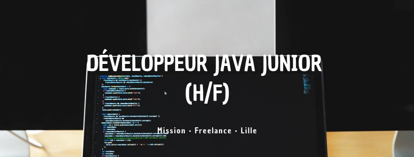 Développeur Java Junior