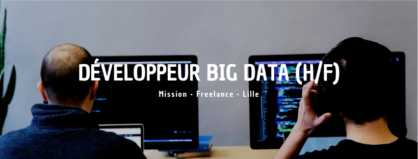 Développeur Big Data