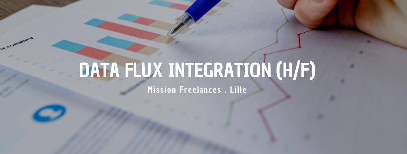 Data Flux Integration (H/F)