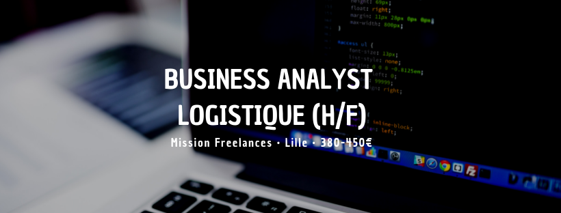Business analyst Logistique (H/F)