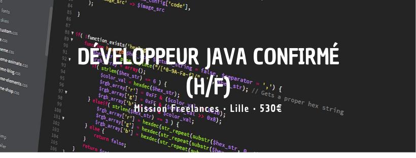 Développeur Java Confirmé (H/F)