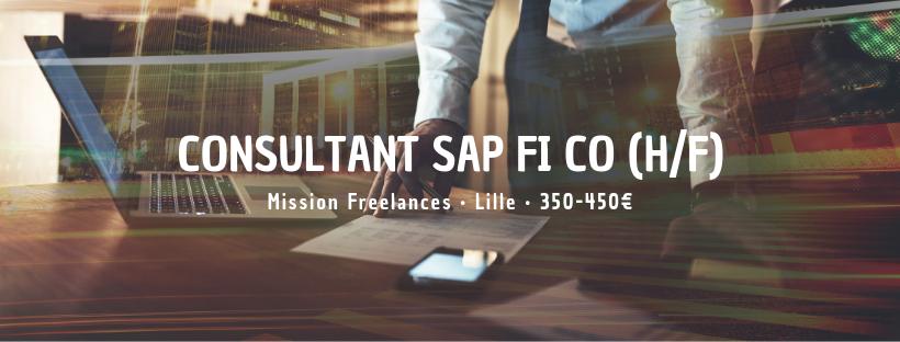 Consultant SAP FI CO (H/F)