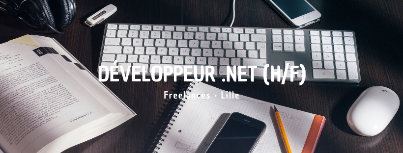 Développeur .Net (H/F)