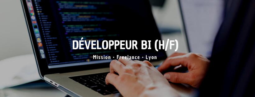 Développeur BI (H/F)
