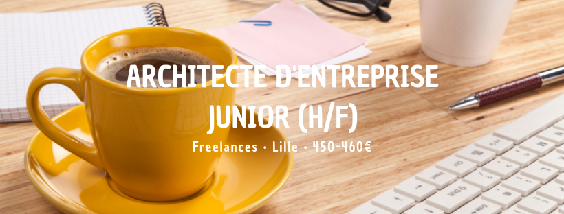 Architecte d'entreprise Junior (H/F)
