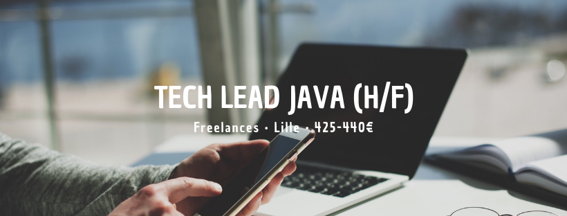 Tech Lead Java (H/F)