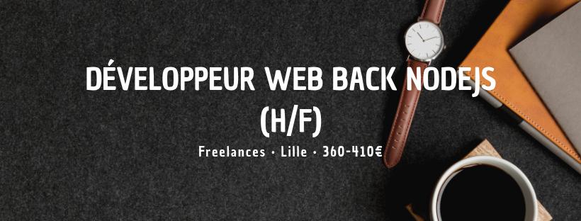 Développeur Web Back NodeJS (H/F)