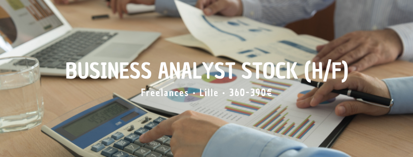 Business Analyst Stock (H/F)
