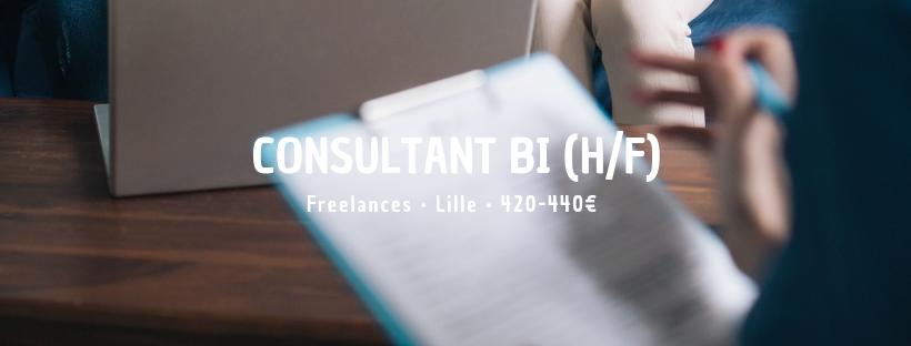 Consultant BI (H/F)