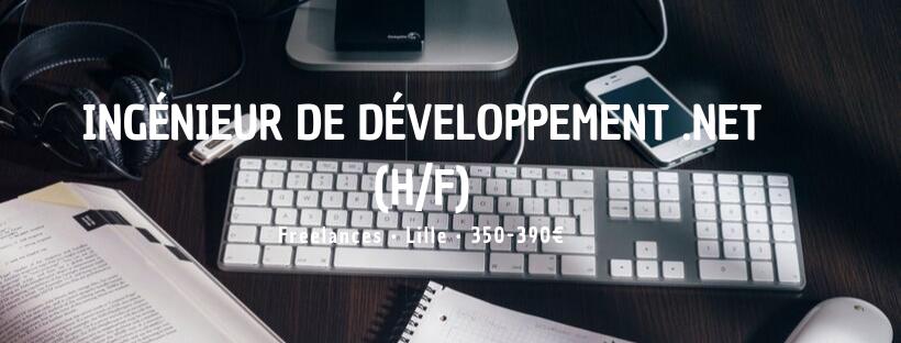 Ingénieur de Développement .Net (H/F)