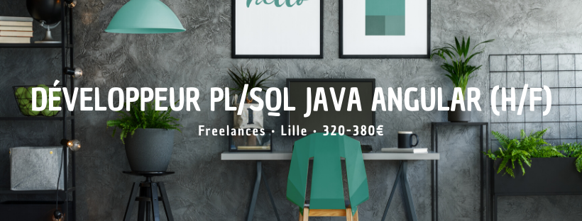 Développeur PL/SQL Java Angular (H/F)