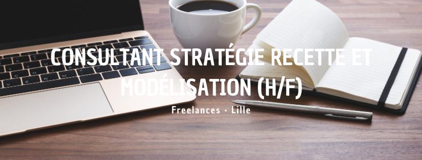 Consultant Stratégie Recette et Modélisation (H/F)
