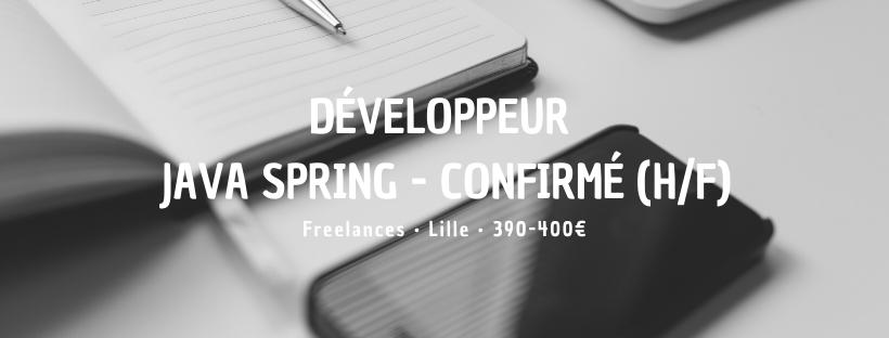 Développeur Java Spring - Confirmé (H/F)