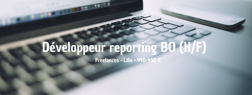 Développeur reporting BO
