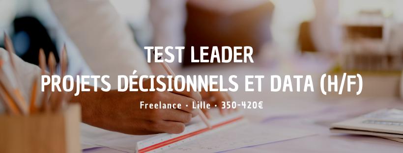 Test Leader Projets décisionnels et Data (H/F)
