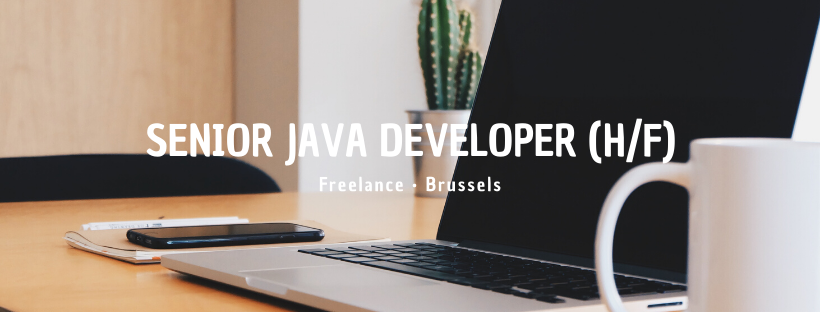 Senior Java Developer (H/F)