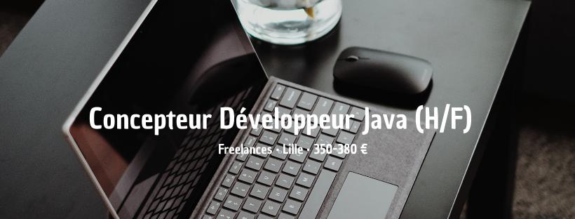 Concepteur Développeur Java